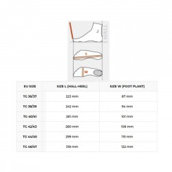 C4 - Fast 400 Fins Blades Only (Pair)